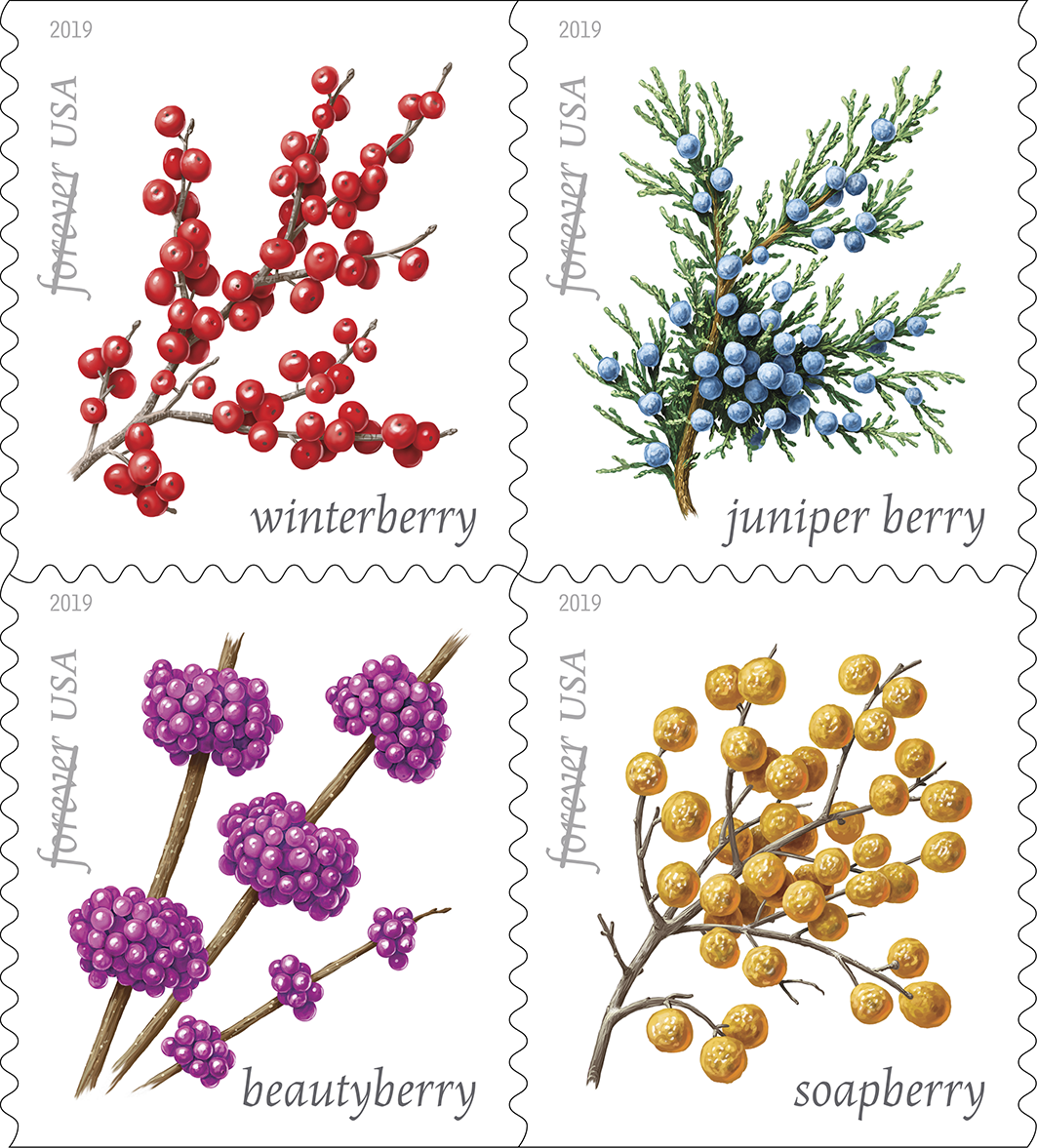Winter Berries Forever Stamps On Sale Today Nationwide
